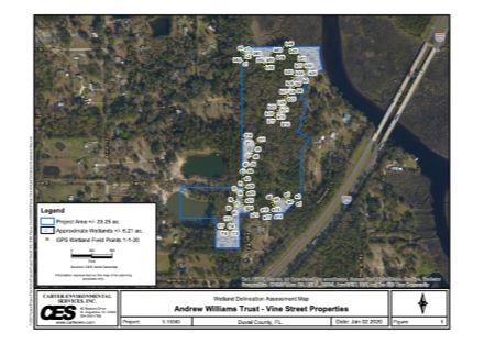 Williams Trust Wetlands