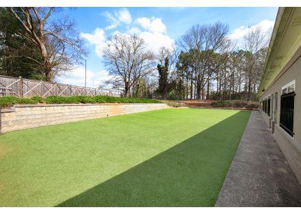 outdoor turf