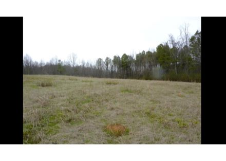 Additional 5 acres available for purchase