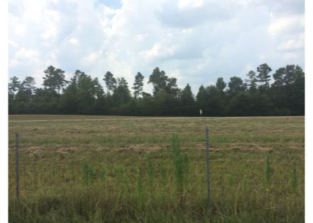 I-20 Ruston Site frontage4