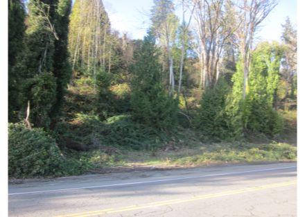 Auburn Vacant Land
